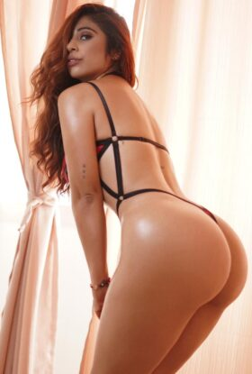 XCLUSIVE COLLECTION Escort Agency